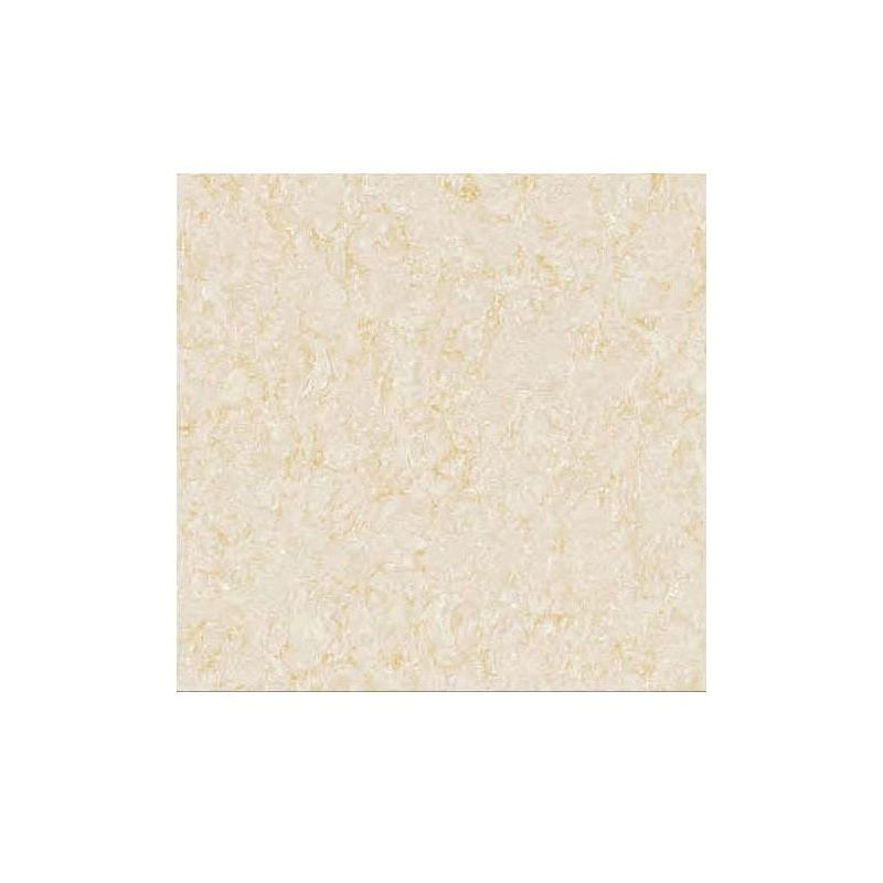 Beroia Polished Porcelain EB-6253